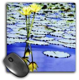 3dRose LLC 8 x 8 x 0.25 Inches Yellow Mirrored Water Lilies